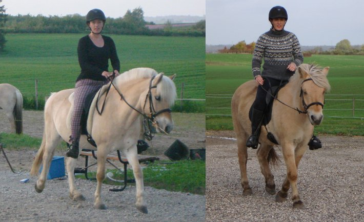 Samme rytter på to heste af forskellig højde, dog ser hestene næsten lige store ud