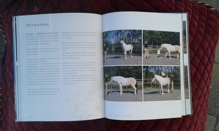 Billedserie af øvelser fra bogen I harmoni med hesten