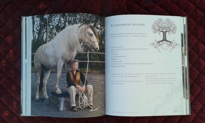 Billede fra bogen I harmoni med hesten