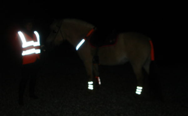 Hest og rytter med reflekser på
