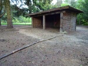 Læskur til heste i paddock paradise