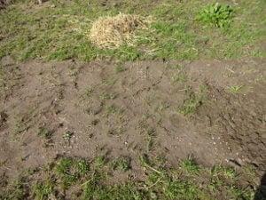 Heavymat er næsten skjult af jord og græs