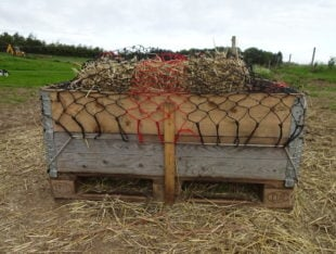 En hjemmelavet slowfeeder med naturlig spiseposition af en palle, pallerammer, trailerelastik og hønet