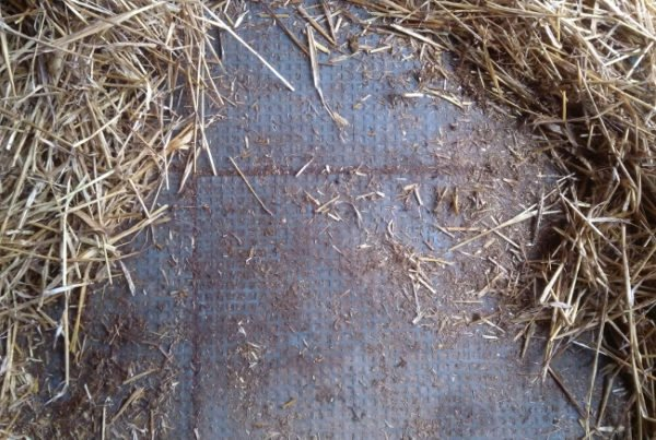 TDJ Isohormat som bund i løsdrift med jordgulv