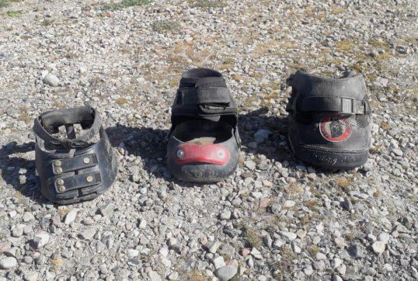 Tre slags boots til heste. Set fra venstre Scoot Boot, Easyboot Glove og Søgeresultater Webresultater Equine Fusion All Terrain Ultra